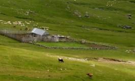 Stani shtëpia e dytë e bariut në bjeshkë