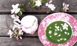 Supë me hithra