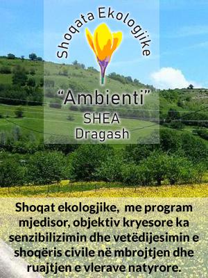 Ambienti SHEA Dragash