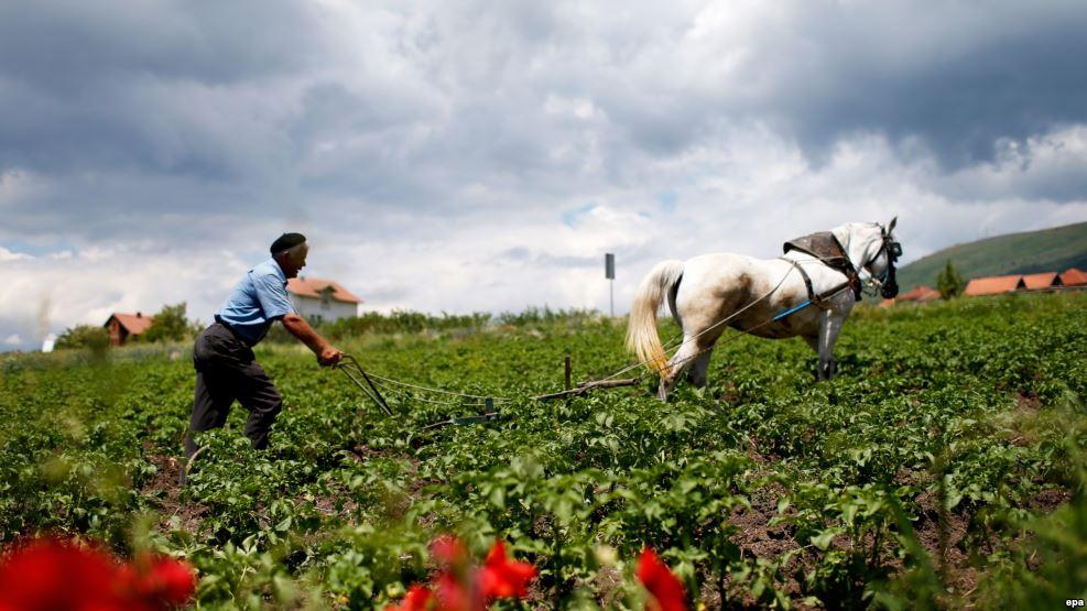 """""""Betonimi"""" i tokave bujqësore"""