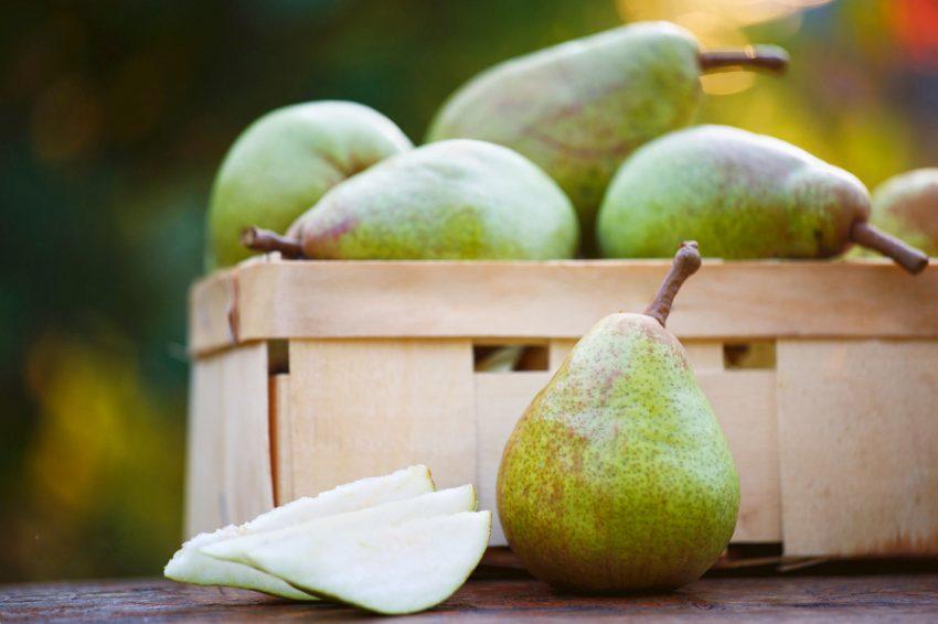 Dardha, fruti që dardanët i falën botës