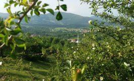 Kosovarët i kthehen bujqësisë