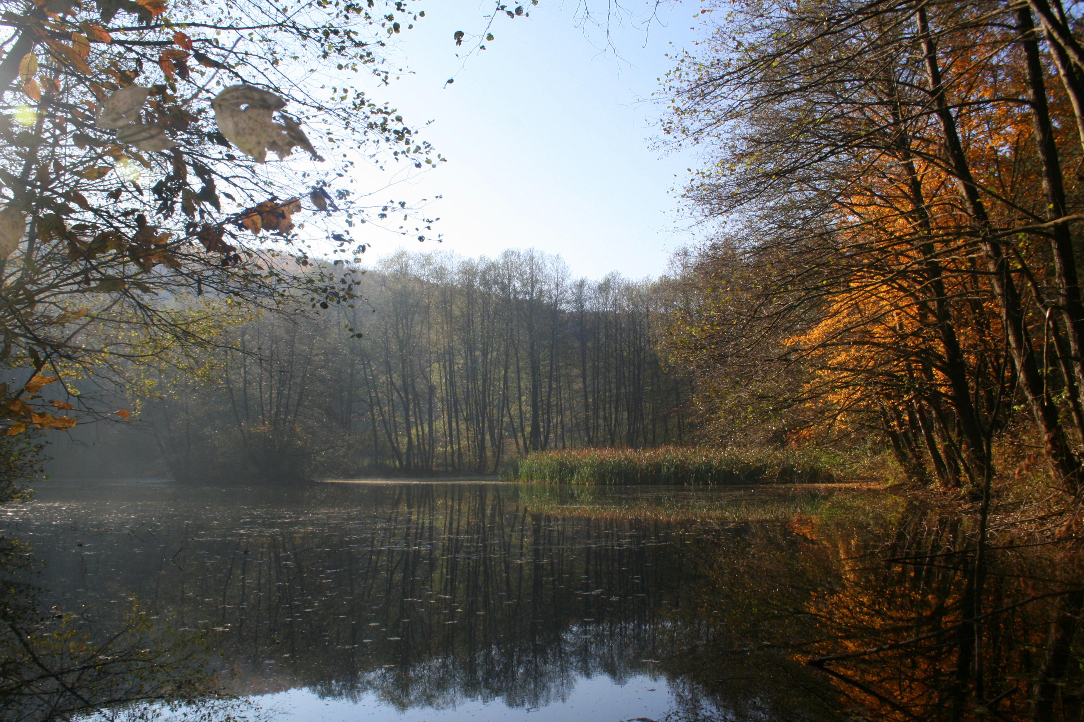 Blinaja, një nga pjesët më të bukura dhe të mbrojtura të Kosovës