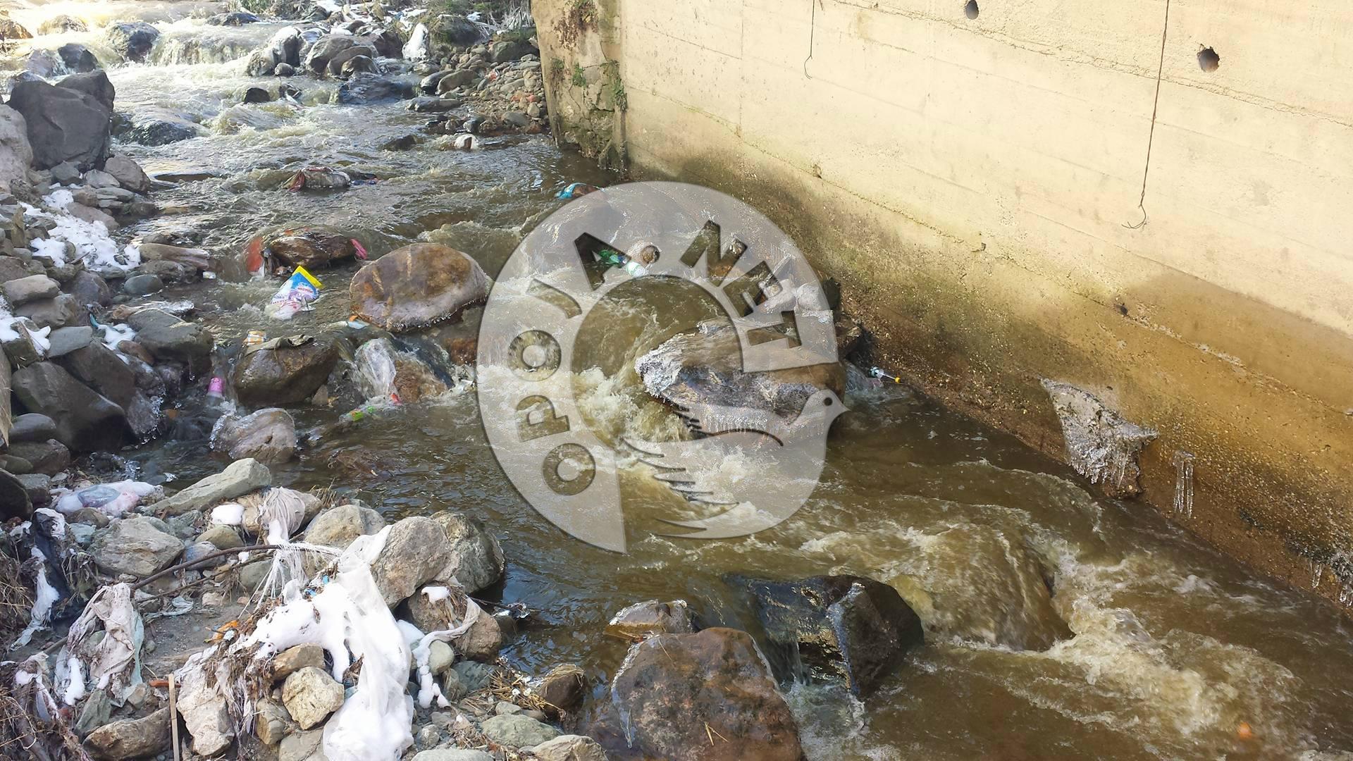Alarmuese ndotja e lumit në fshatin Bresanë