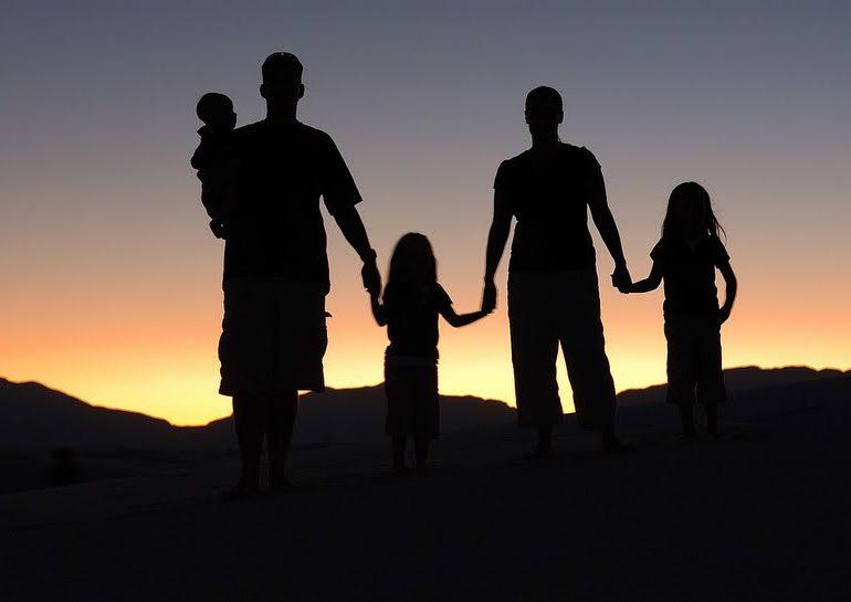 FAMILJA BËRTHAMË DHE AJO TRADICIONALE