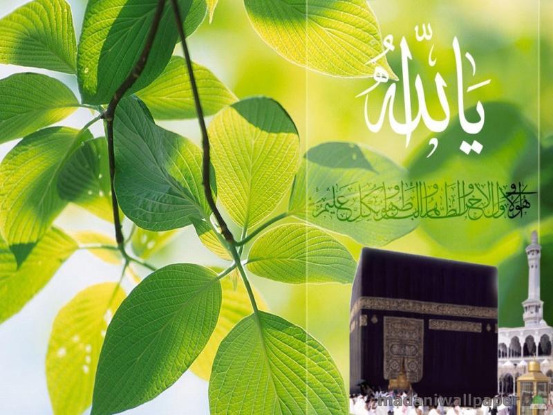 """Mesazhi """"Allahu Ekber"""""""