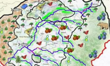 Nga bimët mjekësore te peshqit, Komuna e Dragashit me pasuri të shumta (Grafiku)