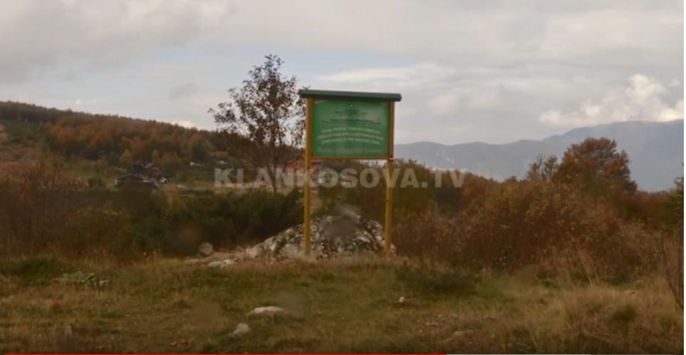 Gjuetarët ilegalë po zhdukin kafshët e egra në Dragash (Video)