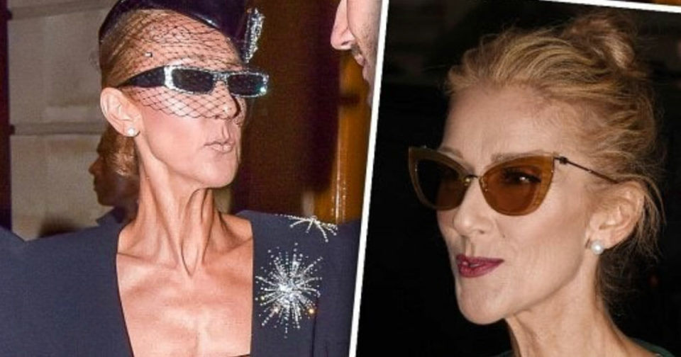 """""""Leave me alone!"""" Celine Dion slams critics who shame her for her new appearance"""
