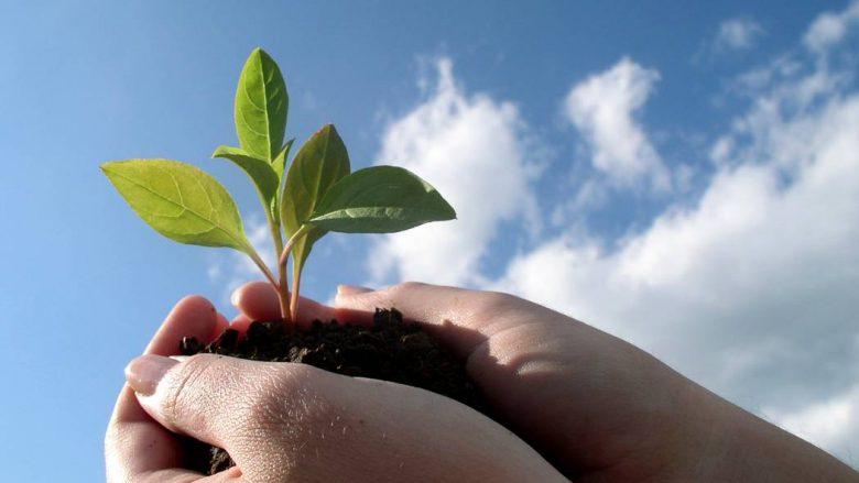 Sektori i bujqësisë me potencial për rritje të eksporteve në Kosovë