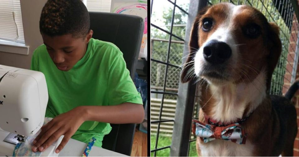 Meet the boy making bow ties for shelter pets to help them get adopted