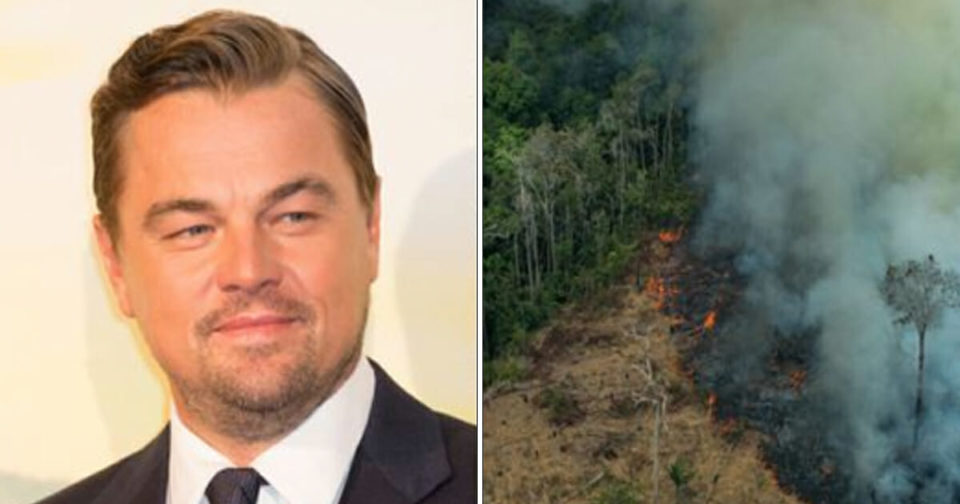 "Leonardo DiCaprio's ""Earth Alliance"" is donating  million to stopping the Amazon fires"