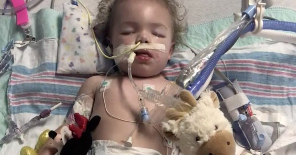 Toddler suddenly becomes paralyzed during family vacation – doctors diagnose her with rare disorder