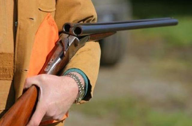 I kapet arma ilegale në barakë të pëllumbave, arrestohet