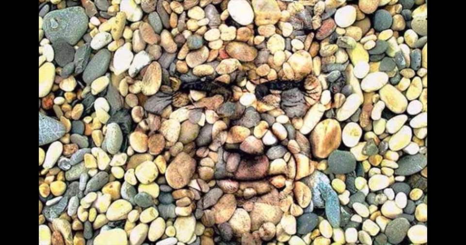 Challenge: Can you find the human face in this picture?