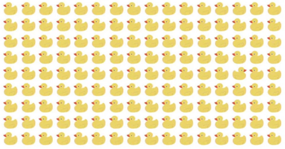 Only a true genius can find the odd duck in less than 20 seconds