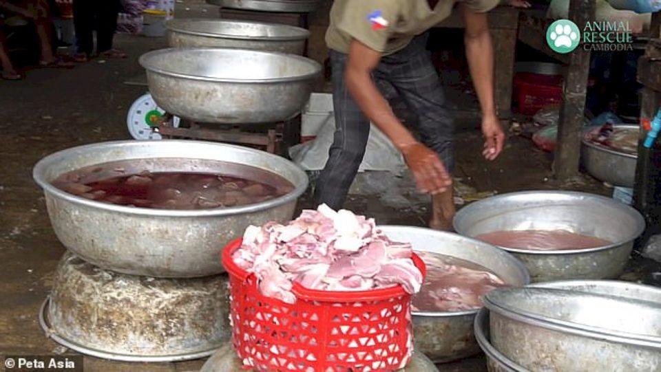 Tregjet e lagështa vazhdojnë të veprojnë në të gjithë Azinë Jug-Lindore ndërsa pandemia koronavirus shkatërron globin