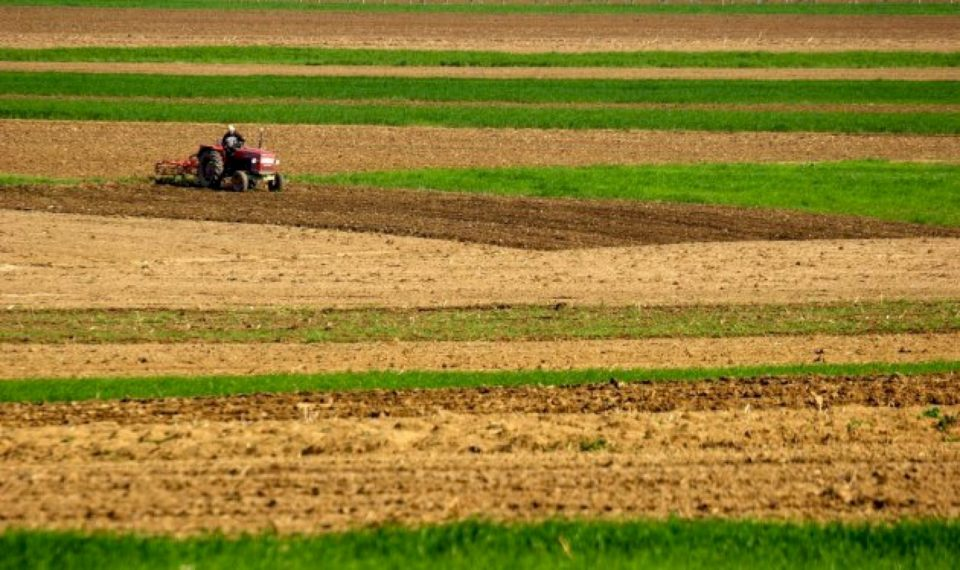 AKK-ja kërkon të rivlerësohen listat refuzuese të subvencioneve