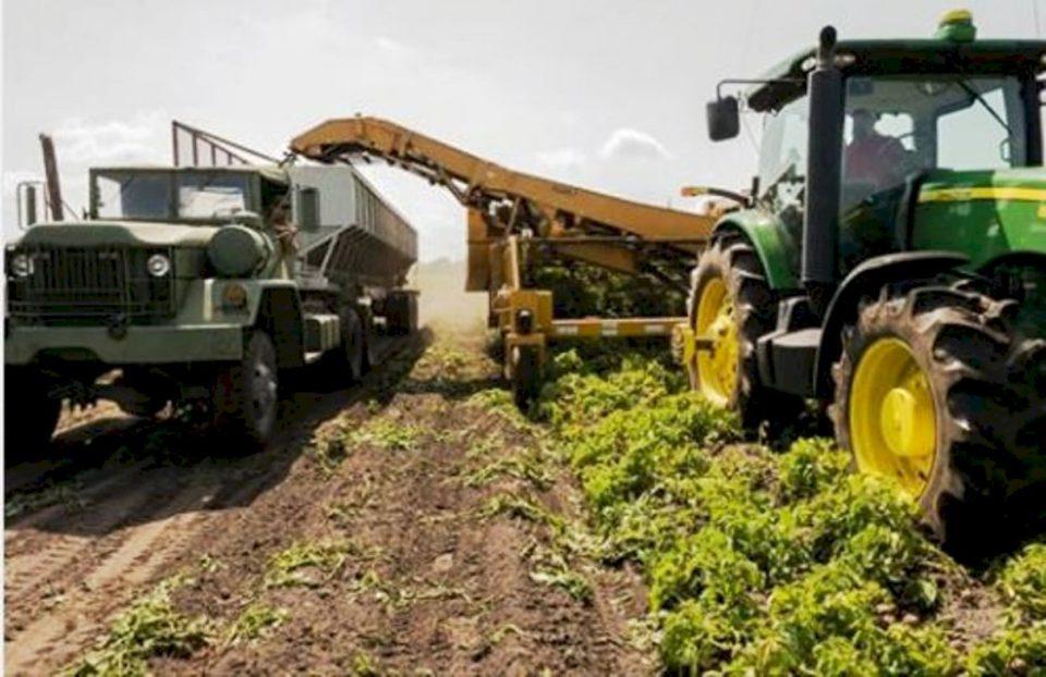 ASK-ja tregon sa ka tokë bujqësore në Kosovë dhe me çka mbillet ajo
