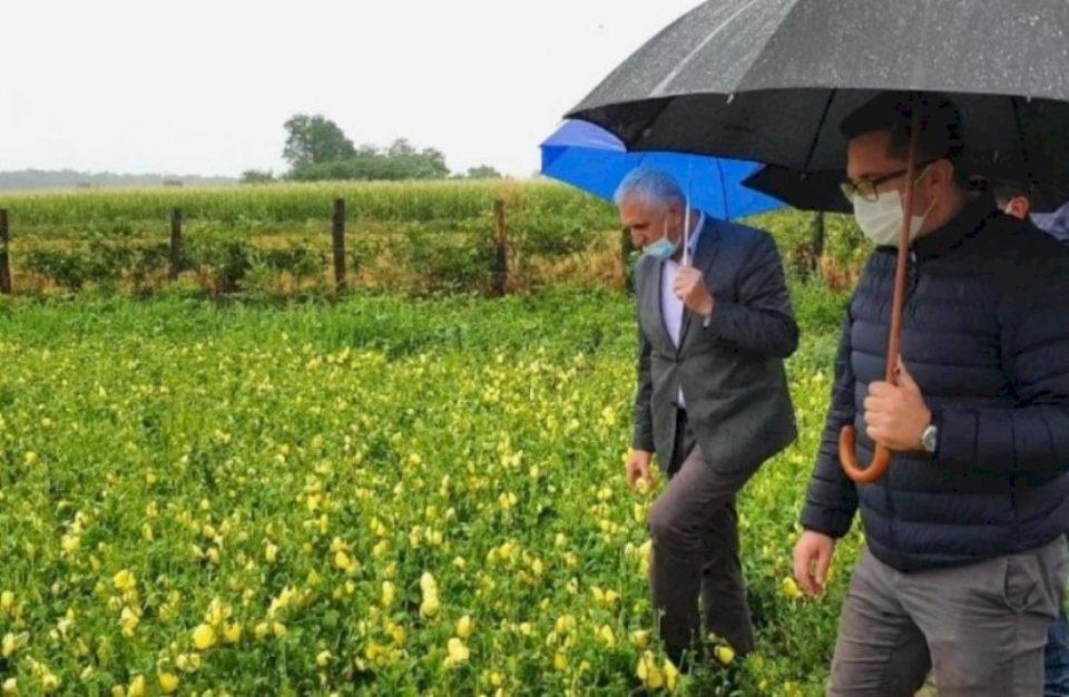 Pritet të krijohet fond i veçantë për sigurimin e kulturave bujqësore