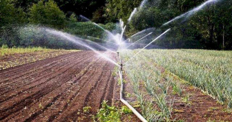 Fillon zbatimi i masterplanit 600 milionësh për ujitjen e tokave bujqësore